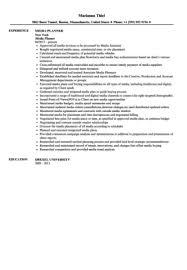 Media Resume Sample by Media Planner Resume Sample Velvet Jobs