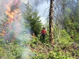Wildfire Fighting Canada by Fire Crews Battling Wildfire South Of Houston Smithers Interior News
