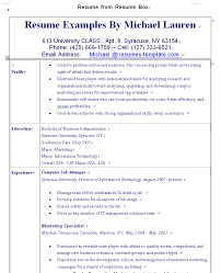 Good It Resume Examples by Examples For Resume