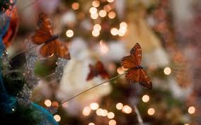 butterflies in the christmas tree other u0026 abstract background