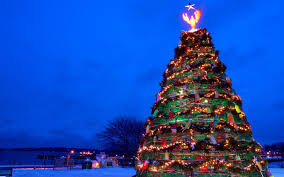 Christmas Tree Sing The Best Christmas Trees In The United States Travel Leisure