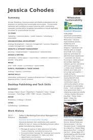 executive resume design executive resume design bluevision us
