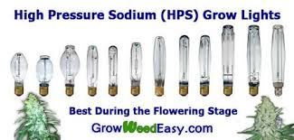 types of grow lights high pressure sodium hps grow lights are well suited to the