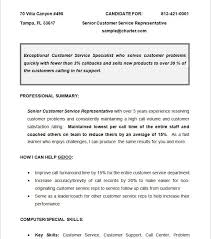 Chronological Resume Builder Chronological Resume Examples Chronological Resume Template The