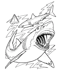shark pictures to color coloring free coloring pages