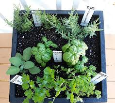 Potted Herb Garden Ideas Planting Herb Garden Types Of Small Herb Garden Ideas 739