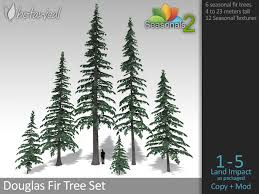 seasonal douglas fir tree set botanical