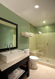 Bathroom Infrared Heat Light Westinghouse R40 250 Watt Medium Base Incandescent Soft Glass