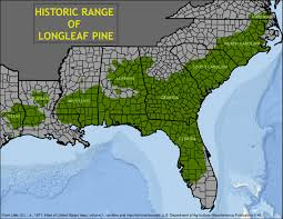 Map Of Sanford Florida by Longleaf Pine Forests