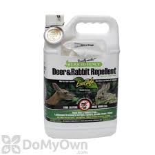Rabbit Repellent For Gardens by Liquid Fence Deer Rabbit Repellent Rtu 109 1 Gallon Free Shipping