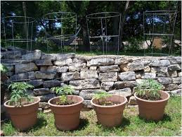 Vine Trellis Ideas Backyards Amazing Backyard Pergola Kits Pictures Pictures With