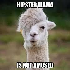 Alpaca Meme Generator - llama meme generate a meme using hipster llama hahaha