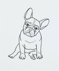french bulldog b u0026n ideas pinterest french bulldogs dog and