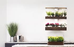 ēdn intelligent indoor gardens