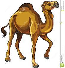 camel clipart clipart panda free clipart images