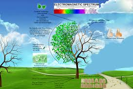 jovoto hybrid energy artificial tree energy r evolution a