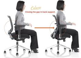 Ergonomic Chair And Desk Captivating Desk Chair Back Support With Back Support For Chair