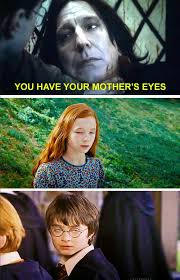 Snape Always Meme - 17 harry potter memes that are so dumb they re great harry