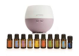 10 Must Home Essentials The by Top 10 Essential Oils