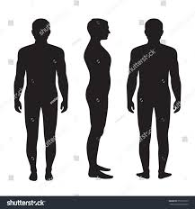 Body Anatomy Back Human Body Anatomy Vector Man Silhouette Stock Vector 253516723