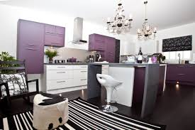 the beauty of purple kitchens decorate 101