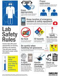 infographic lab safety rules carolina com