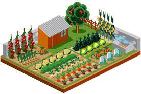 growing an urban vegetable garden home decor u0026 interior exterior
