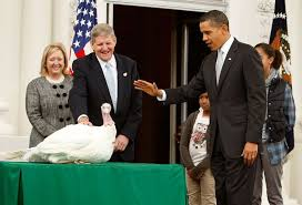 presidential turkey pardon a white house tradition