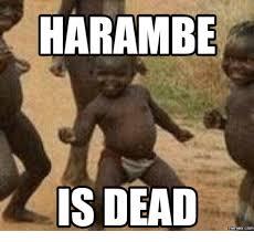 Best Meme Creator - 25 best memes about harambe meme generator harambe meme