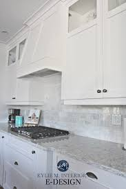 is sherwin williams white a choice for kitchen cabinets should you really paint your kitchen cabinets white and
