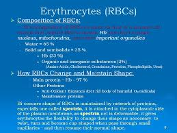 Rbc Resume Physiology Of Erythrocytes Blood Groups Ppt Download