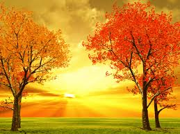 3d autumn colors autumn pinterest