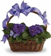 Send Flowers San Antonio - 84 best mother u0027s day flowers u0026 gifts images on pinterest flower
