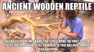 Reptile Memes - ancient wooden reptile you can see from the grains that these were