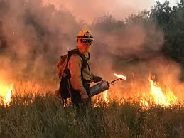 Fire Evacuations Stevens County by July 2017 Nw Fire Blog Page 3