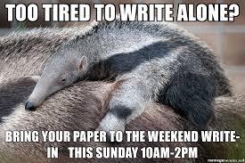 Anteater Meme - anteater meme mne vse pohuj