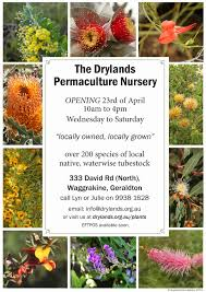 edge of the woods native plant nursery plant nursery flyers google search garden pinterest plant