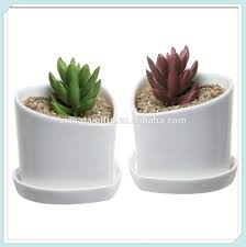 Tooth Shaped Planter Mini White Ceramic Flower Pots Mini White Ceramic Flower Pots