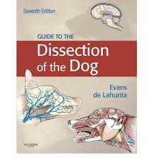 Dog Anatomy Book Guide To The Dissection Of The Dog Howard E Evans 9781437702460