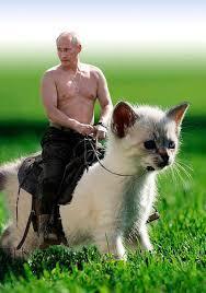 Putin Memes - 7 of the best banned putin memes