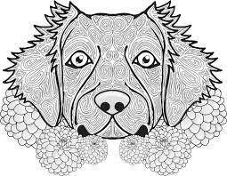 230 coloriage mandala chien images coloring