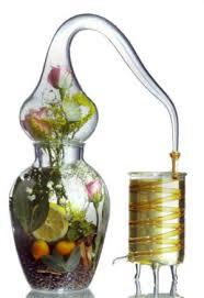cuisine aux huiles essentielles huiles essentielles
