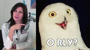 O Really Meme - know your meme o rly on vimeo