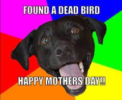 Mothers Day Funny Meme - happy mothers day memes funny emotional for friends facebook
