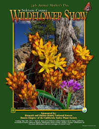 native plants california klamath national forest resource management