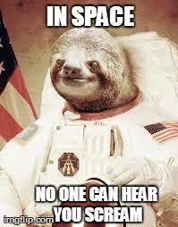Sloth Whisper Meme - 11 best sloth images on pinterest creepy sloth meme funny