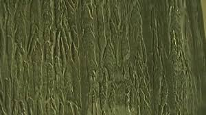 painting tree bark wall texture with effects youtube