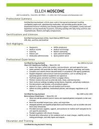 Scribe Resume Resume Template Professional Summary