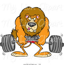 clipart of a cartoon body builder lion weightlifting by toonaday