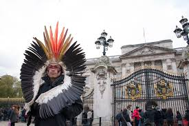native rainforest plants fifa world cup and rainforest plants an amazon indian in london